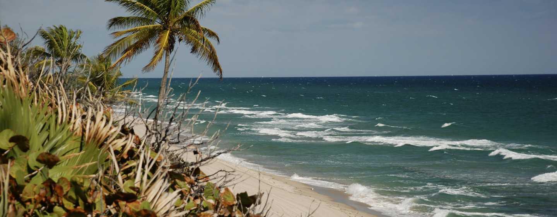 Bahia Mar Fort Lauderdale Beach – a DoubleTree by Hilton Hotel, EUA – Praia