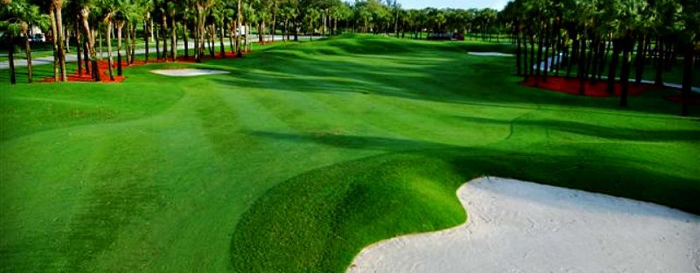 Embassy Suites Deerfield Beach - Resort & Spa, United States of America - Greens do campo de golfe