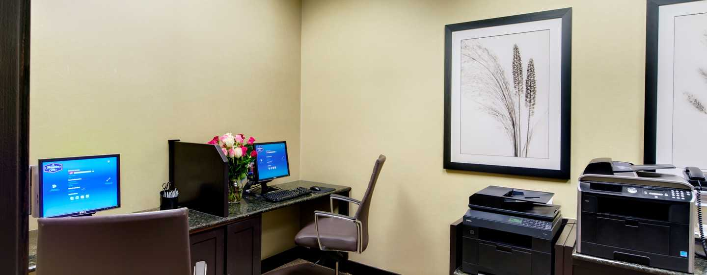 Hampton Inn & Suites Chicago-Downtown, EUA - Business Center