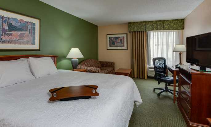 Hampton Inn Miami Dadeland Hotel - King Room