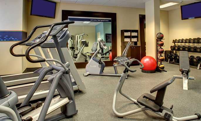 Hampton Inn & Suites Miami-Airport South-Blue Lagoon Hotel, FL - Fitness Center