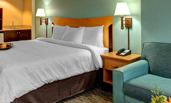 Hampton Inn & Suites Miami-Airport South-Blue Lagoon Hotel, FL - King Study w/ Sofabed NS