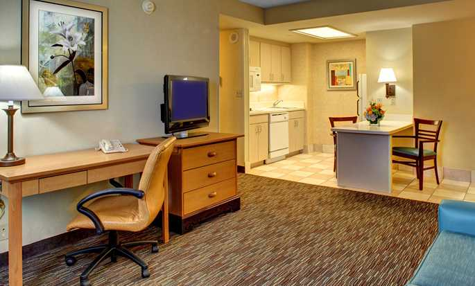 Hampton Inn & Suites Miami-Airport South-Blue Lagoon Hotel, FL - Suite