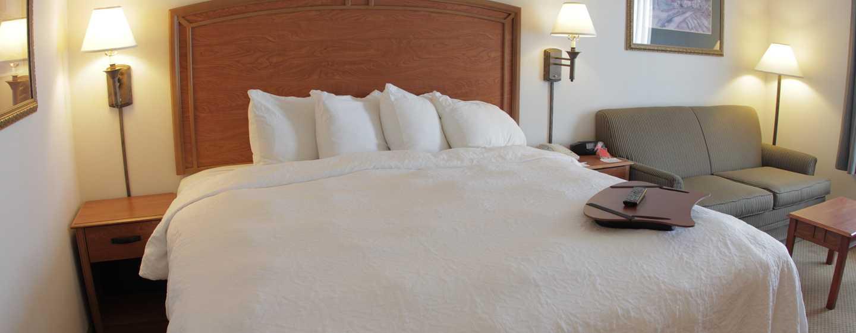 Hotel Hampton Inn by Hilton Torreon-Airport Galerias, Coahuila, México - Habitación con cama King y sofá