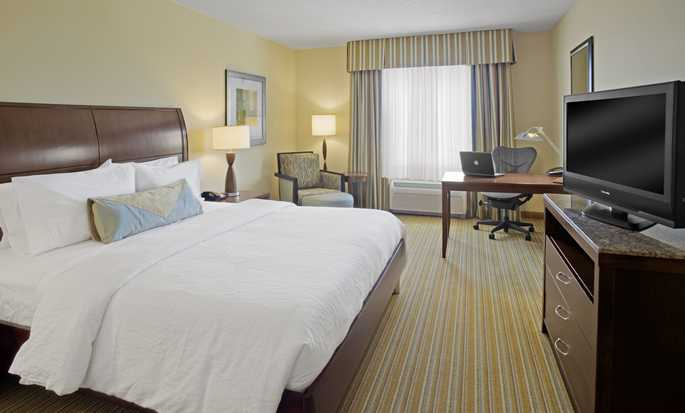 Hilton Garden Inn Lake Buena Vista/Orlando hotel - King Room