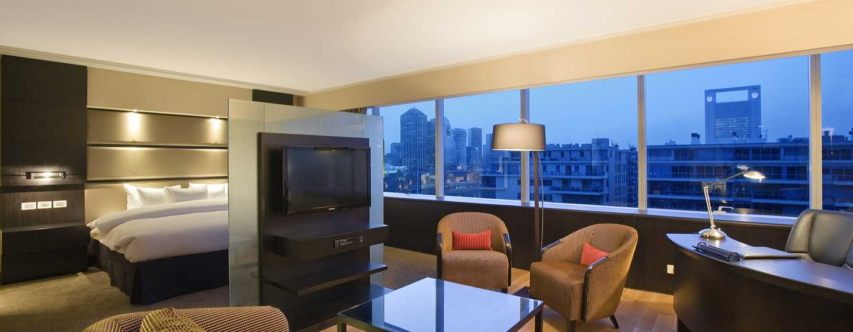 Hotel Hilton Buenos Aires, Argentina – Suíte Junior