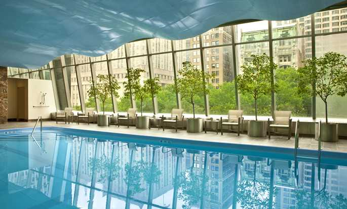 Hôtel Millennium Hilton New York Downtown - Indoor Pool