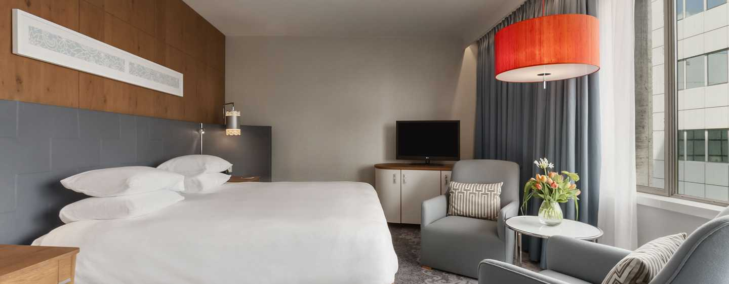Hilton Rotterdam hotel, Netherlands - Accessible Room