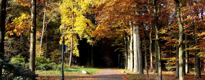 Hilton Royal Parc Soestduinen, Nederland - De omgeving van het hotel