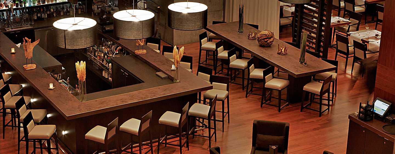 Hotel Hilton Toronto, Canadá – Tundra Bar