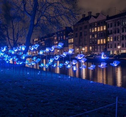 Festival des lumières: DoubleTree by Hilton Amsterdam Centraal Station