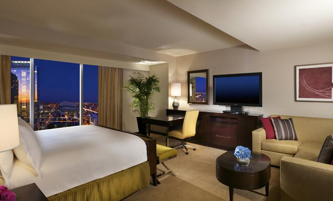 Hilton Americas-Houston, Texas, USA - Suite