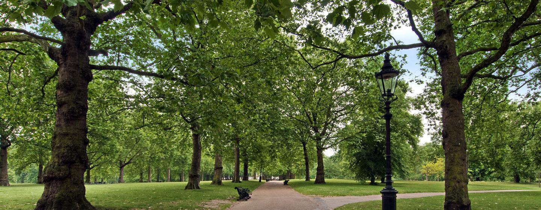 Der königliche Green Park befindet sich in unmittelbarer Nähe zum Hotel
