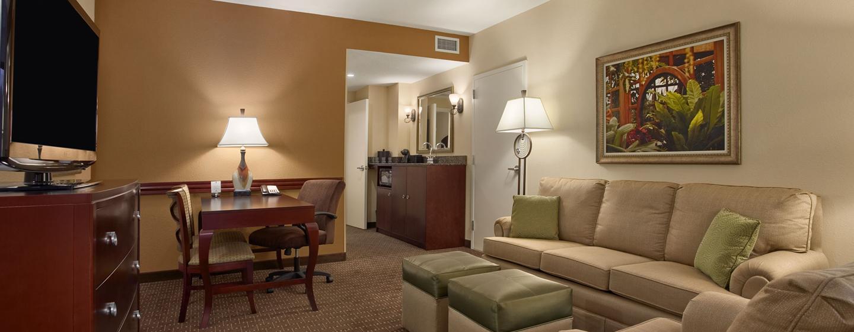 Hotel Embassy Suites Orlando - Lake Buena Vista South, FL - Sala de estar de la suite