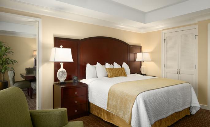 Hotel Embassy Suites Orlando - Lake Buena Vista South, FL - Suite Executive