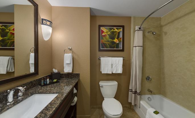 Hotel Embassy Suites Orlando - Lake Buena Vista South, FL - Baño de la suite