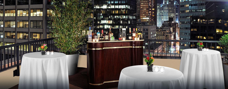 Hotel DoubleTree by Hilton Metropolitan - New York City, NY - Terraza
