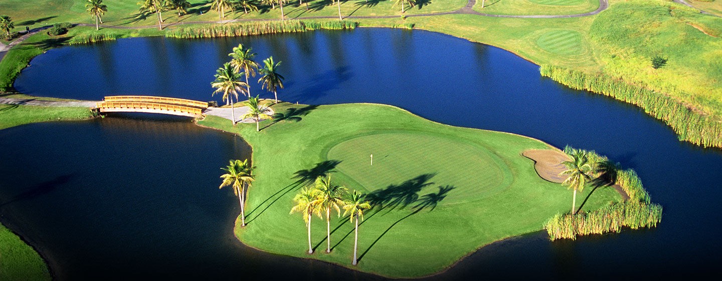 Hilton Ponce Golf & Casino Resort, Puerto Rico - Campo de golf Island Green