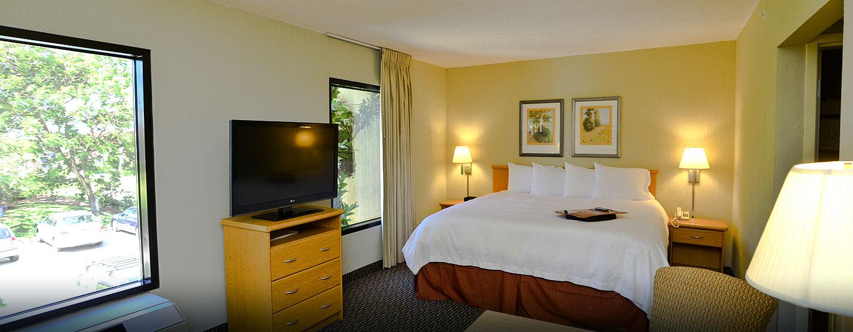 Hotel Hampton Inn & Suites by Hilton San José-Airport, Costa Rica - Habitación tipo estudio con cama King