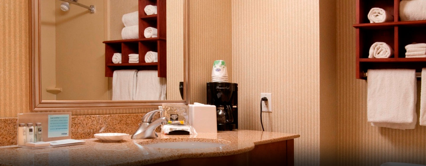 Hôtel Hampton Inn by Hilton Toronto-Mississauga West, ON, Canada - Salle de bains