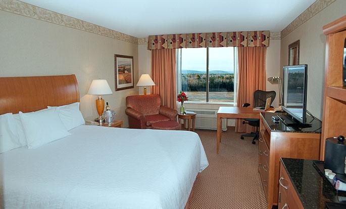 Hôtel Hilton Garden Inn Halifax Airport, Nouvelle-Écosse, Canada - Chambre avec très grand lit