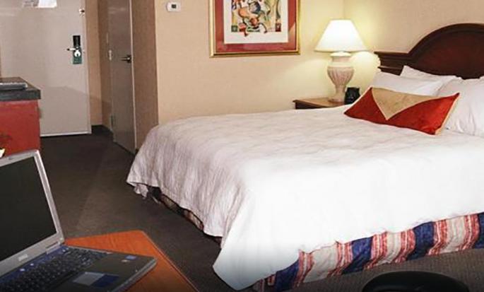 Hôtel Hilton Garden Inn Kitchener Cambridge, Canada - Chambre Évolution avec un très grand lit