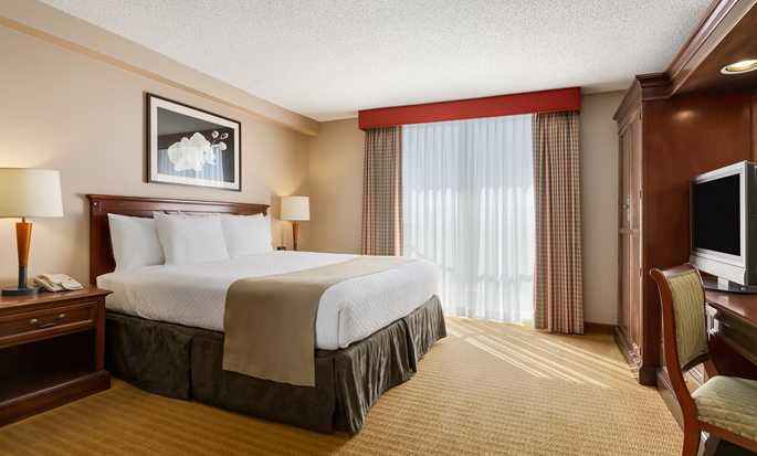 Hotel Embassy Suites San Francisco Airport - South San Francisco, California - Suite con cama King
