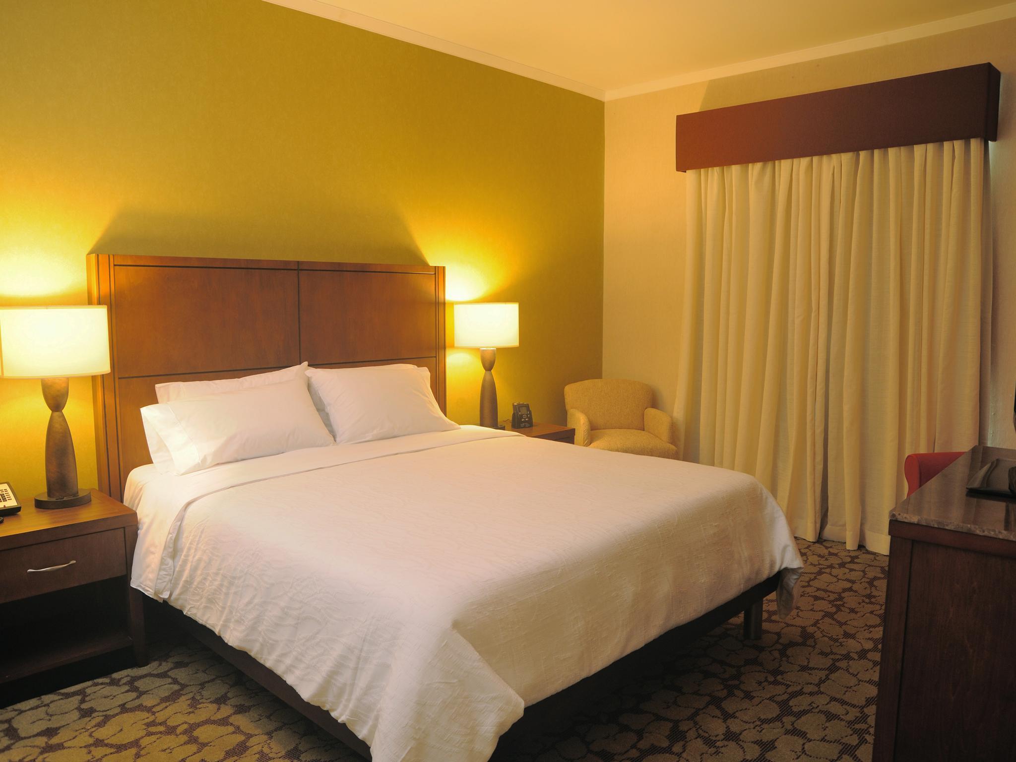 Hoteles En Panam 225 Hilton Garden Inn Panam 225