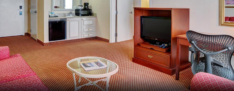 Hôtel Hilton Garden Inn Kitchener Cambridge, Canada - Salle de séjour d'une su