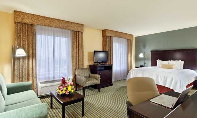 Hampton Inn & Suites Ft. Lauderdale West-Sawgrass/Tamarac, FL - King Suite