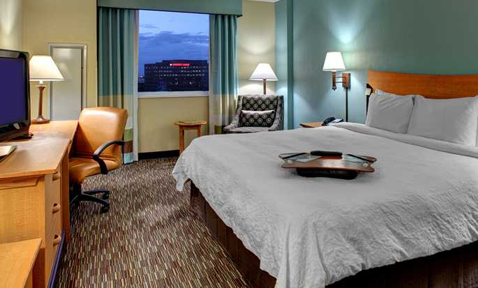 Hampton Inn & Suites Miami-Airport South-Blue Lagoon Hotel, FL - King Room Standard